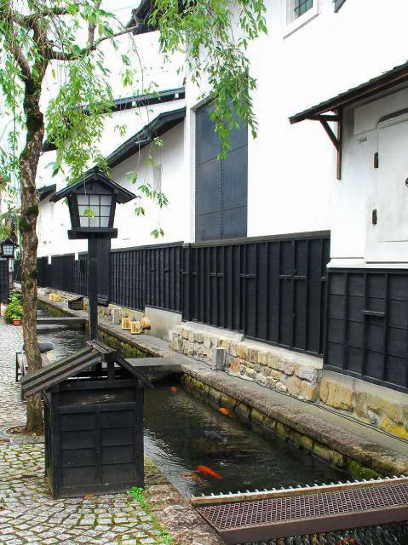 Hida Furukawa is a small town which is located north-west of Takayama. Visitors feel relaxed after moving around Takayama crowded with tourists. These white wall storehouses and the clean Seto River is the must-visit spot.