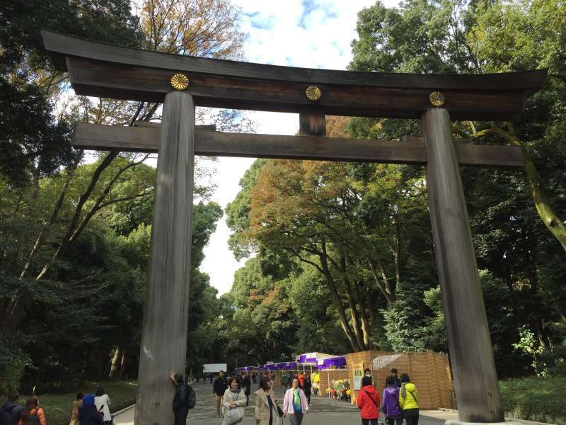 This is a great Torii gate of Meiji Shinto shrine enshrined great grand father of the present Emperor of
