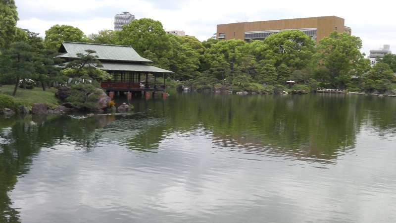 1a. Kiyosumi Garden (Pond with a lot of carps and turtles)