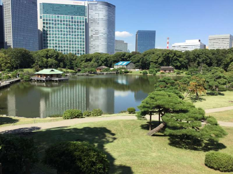 5a. Hamarikyu Garden (Main pond with a tea house)