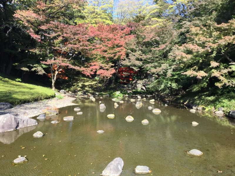 3d. Koishikawa Korakuen Garden (Autumn leaves)