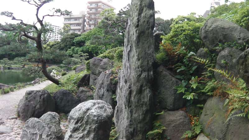 2b. Kiyosumi Garden (Collection of Japanese rocks)