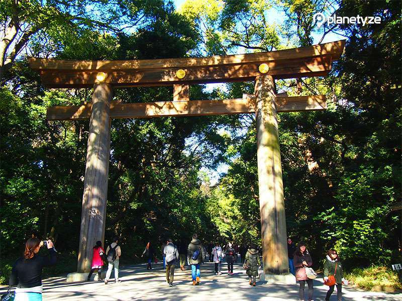 Meiji Jingu Shrine is the most famous shrine in Japan where Emperor and Empress of Meiji are enshrined.