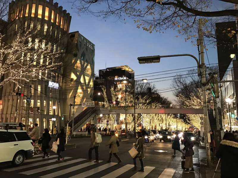 Omotesando Street, lined with zelkova trees and shops selling world's brands, in Harajuku area