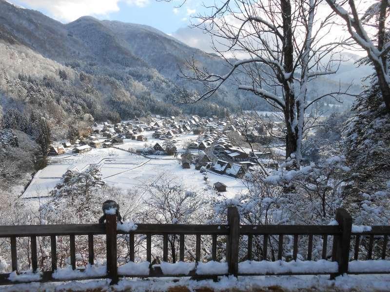 A bird's-eye view of Shirakawago village