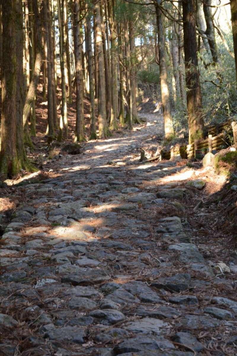 Option No.1 : walking stone pavement