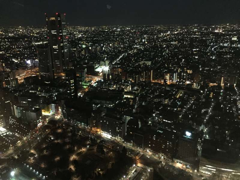 Gorgeous view from Tokyo Metropolitan Government Building ( evening time)