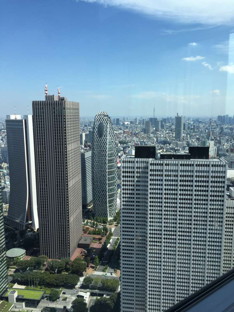 Magnificent view from Tokyo Metropolitan Government Building (day time)