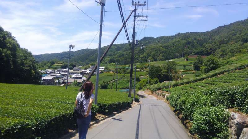 Walking thru the village (3 courses depending on your physical level)