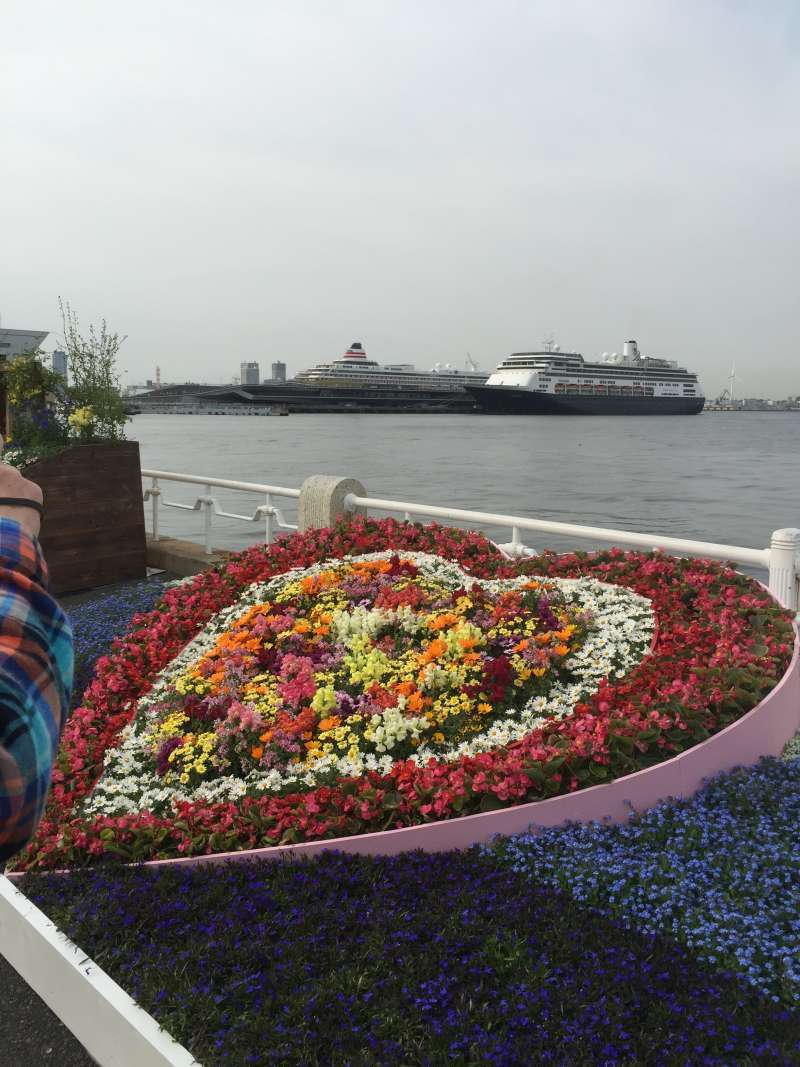 Viewing the big pier from Yamashita park