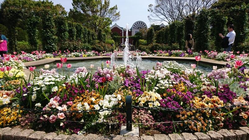 English garden at Harber view park