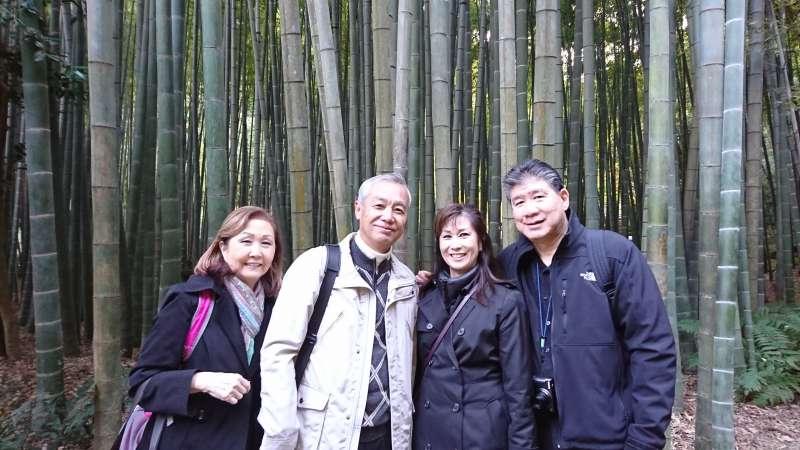 Bamboo grove at Hoh-koku-ji temple