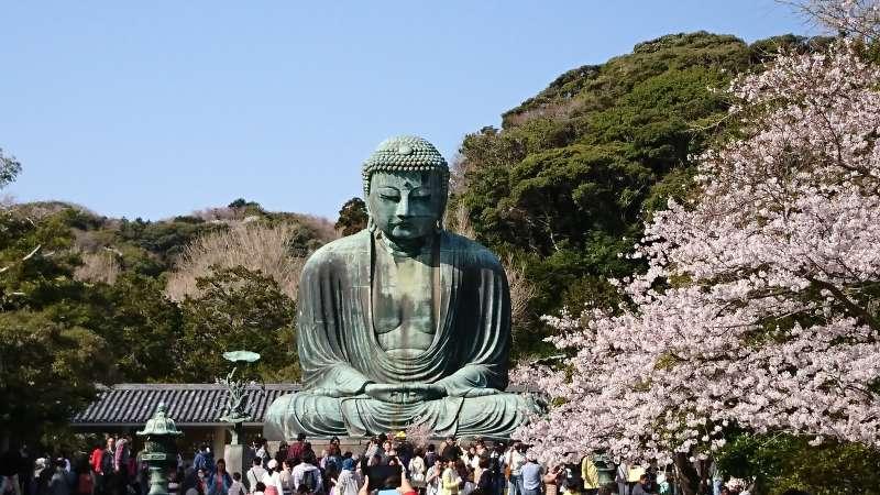 Big Buddha in Kotokuji temple