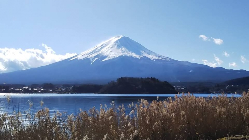 Mt. Fuji from Oishi Park. Oishi Park is one of the most popular spots to see Mt. Fuji.