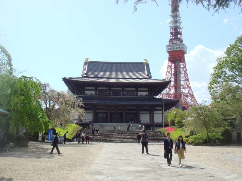 Zojyoji temple and Tokyo Tower in a nice matching view.