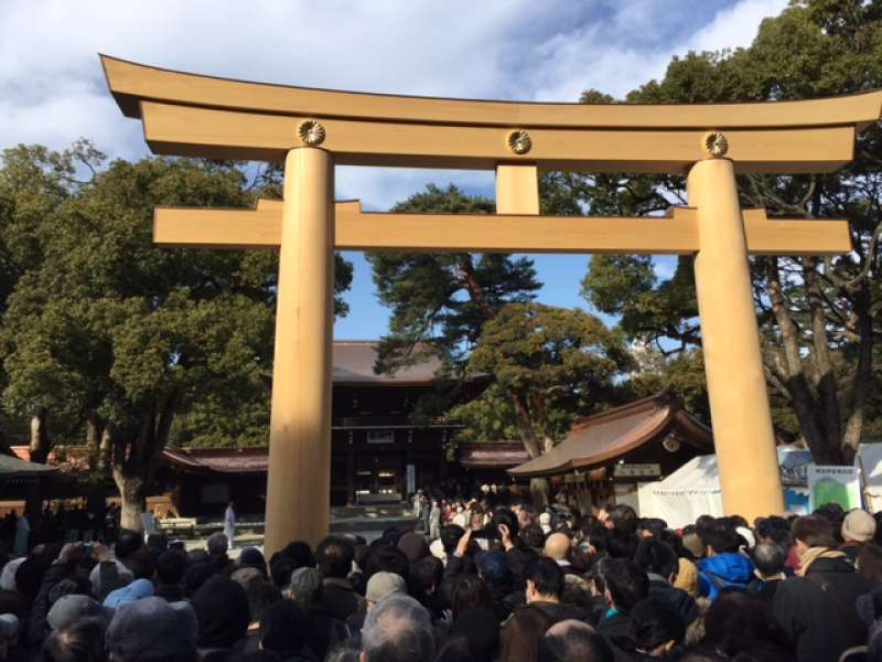 Great Torii-gate are in Meiji-Jingu shrine. This gate divine sacred and worldly areas.