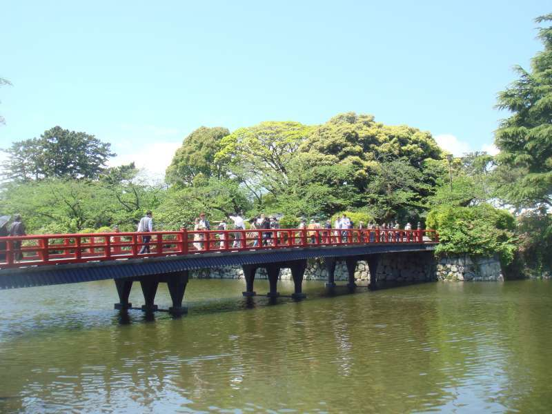 Vermilion castle bridge spanning moat lead you to main gate of Odawara castle. There are so many beautiful cherry blossome here and there.