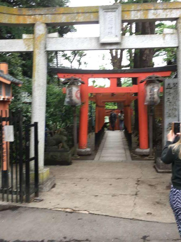 Torii gate of Hanazono Shrine in Ueno Park