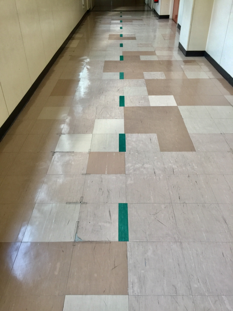 Center line of the hallway that asks students to walk on the right