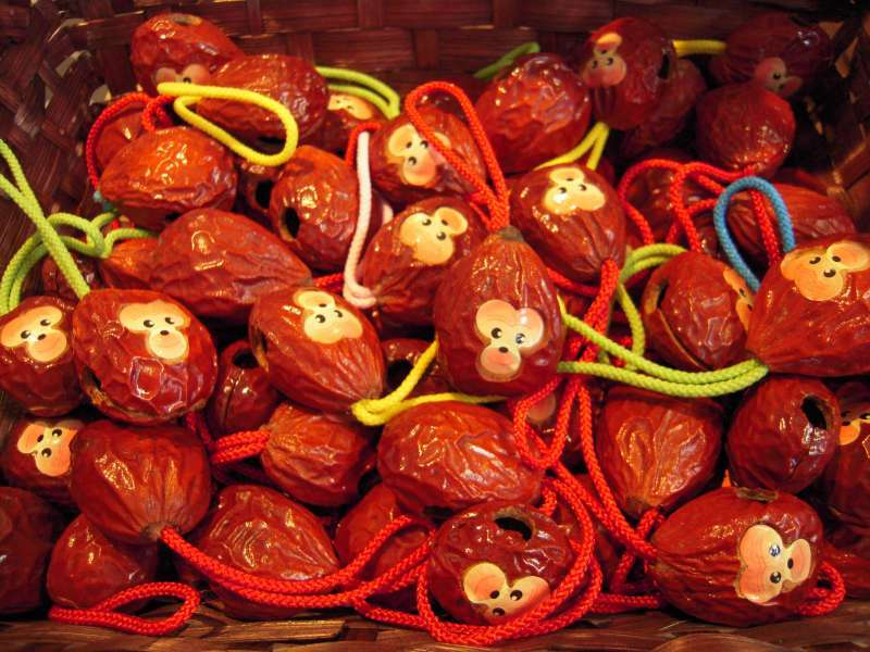 This is Miyazaki's popular souvenir from old times.  This little cute monkey is made of a fruit of cycads.