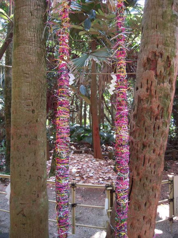 To succeed in finding love, pick pink string and tie it on the tree!