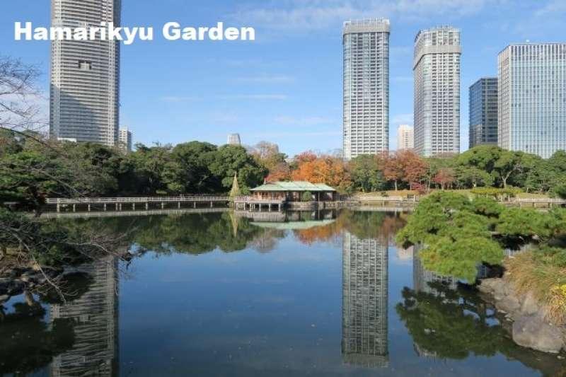 3. Wonderful Hamarikyu Garden