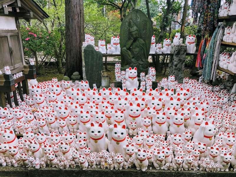Cat Statues In Gotokuji Temple, Tokyo
