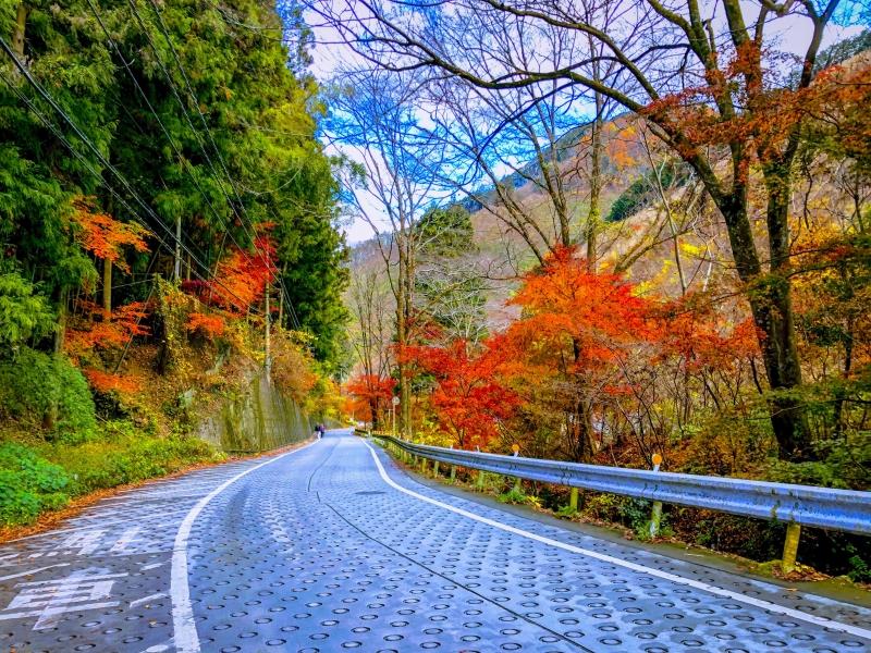 Hiking Road at Mount Mitake, Tokyo