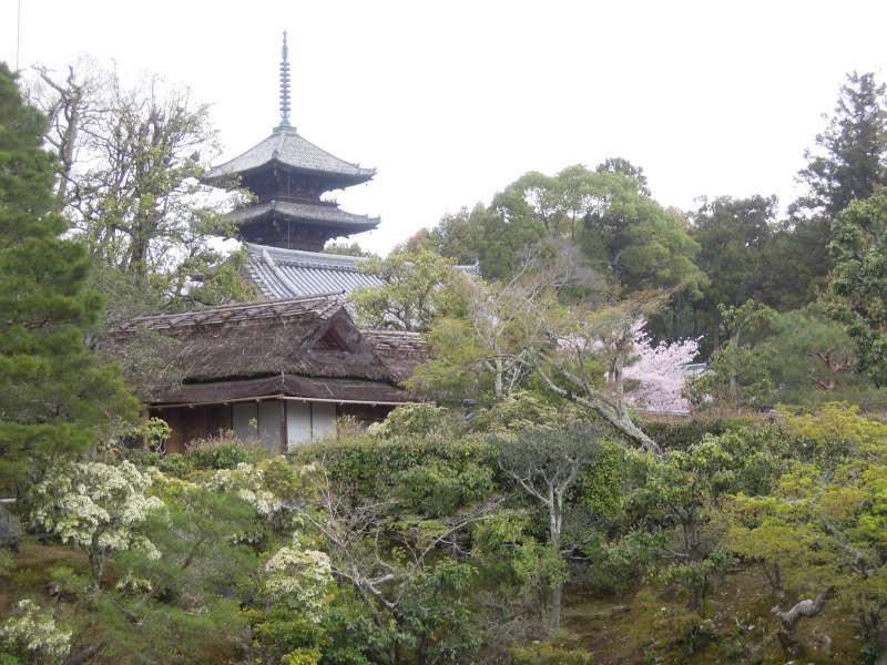 Ninna-ji Temple called Omuro, or the emperor's residence, near Kinkaku-ji