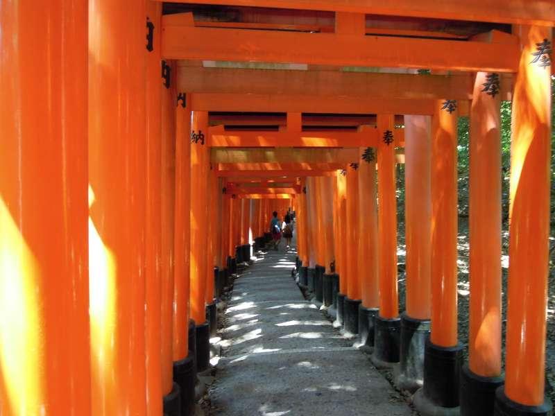 A thousand torii gates of Fushimi Inari Grand Shrine