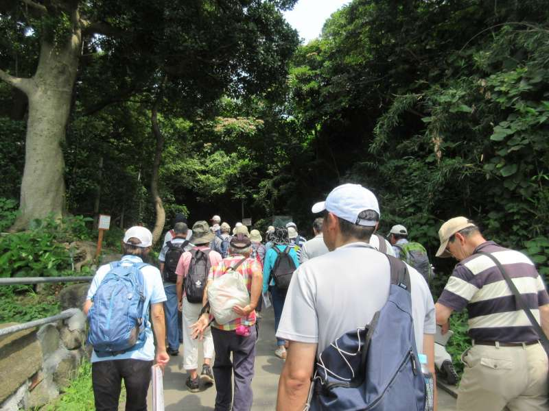 Sarushim tour, the only desert island in Tokyo Bay