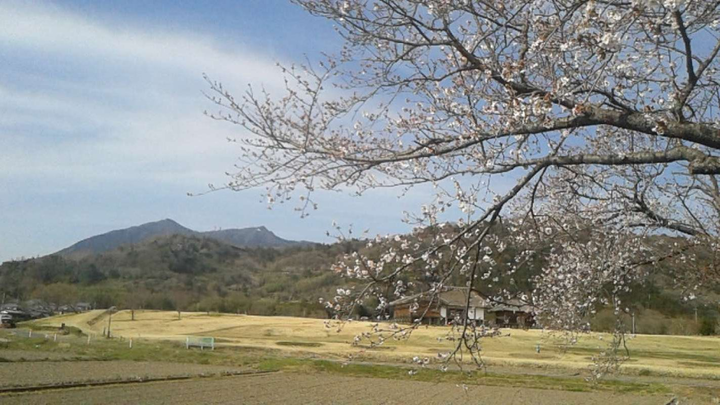 This is the view of Mt. Tsukuba in spring.