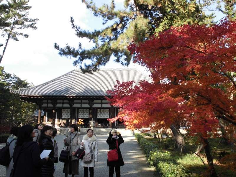Toushoudai-ji Temple Kondo(Main Hall) National Treasure, 8th century