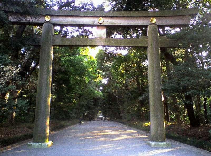 Meiji Shrine -Memory of the sacred forest