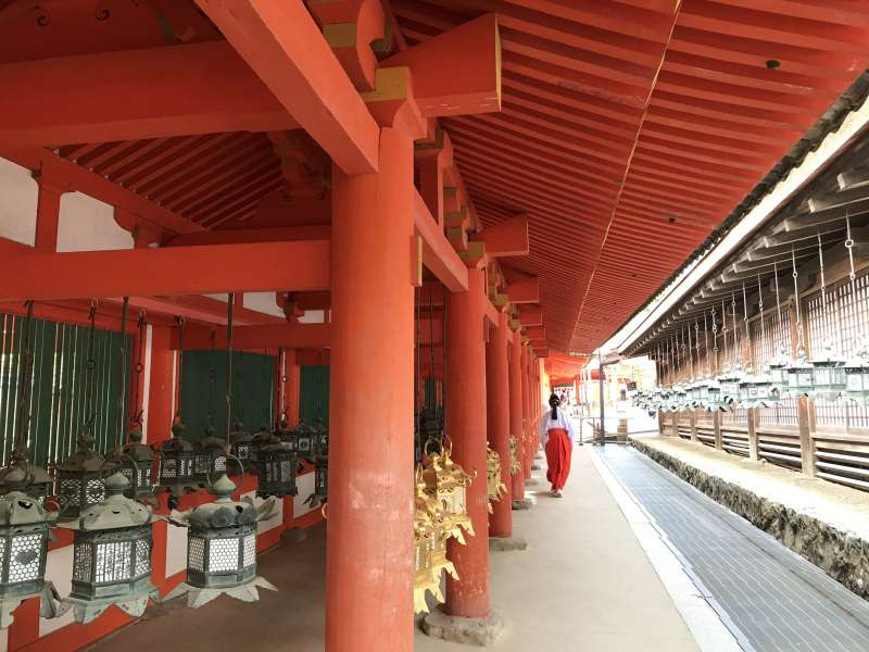 In the glimpse of a moment, a shrine maiden, Kasuga Taisha Shrine, Nara city, Nara