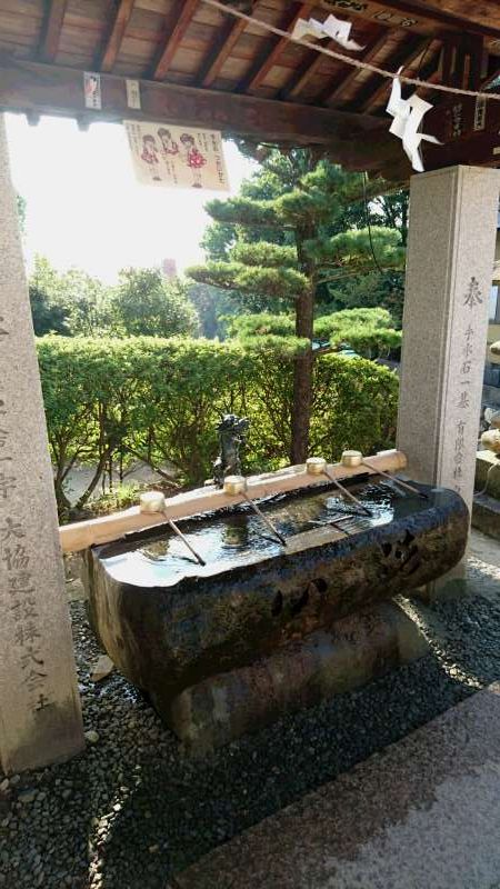 This is a washbasin. The water is used for purification of your body before standing in fron of the deity. Rinse your mouth and wash your hands.