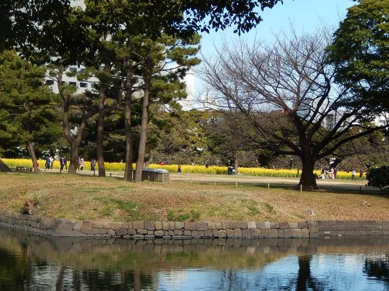 Hamatikyu garden
