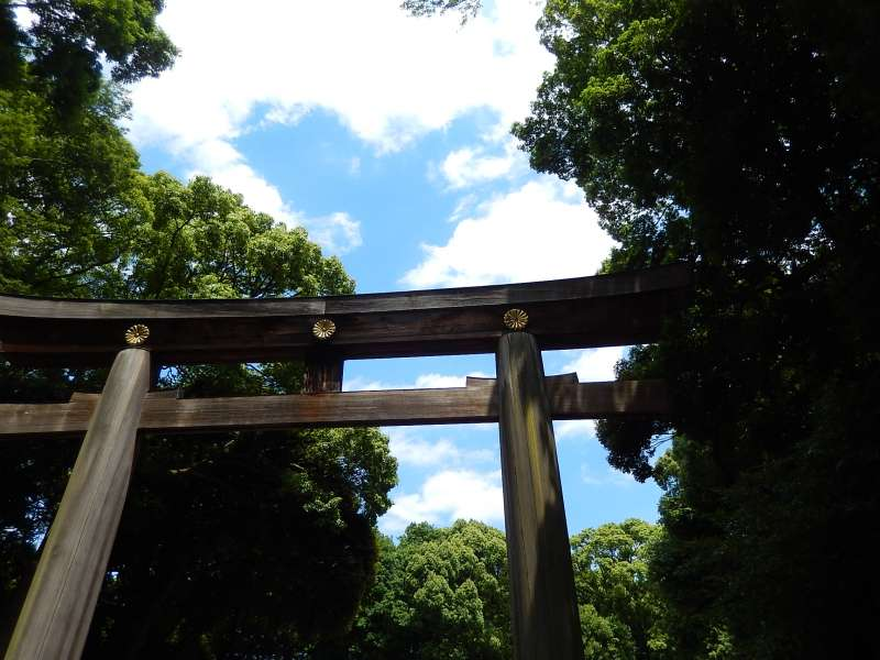Meiji-jingu torii gate