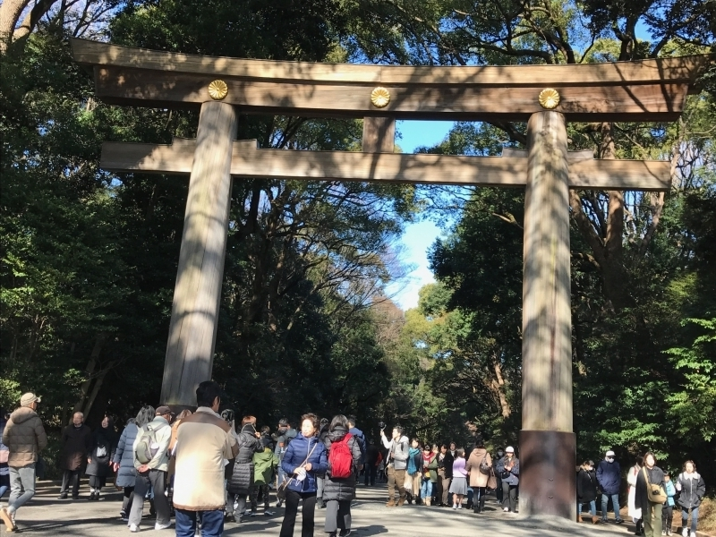 Meiji Shinto shrine, A lot of people say they feel spiritual here.