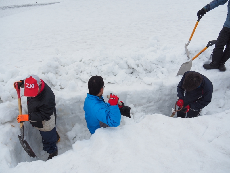 Digging the 3-meter-deep Snow in search of the Winter Vegetables