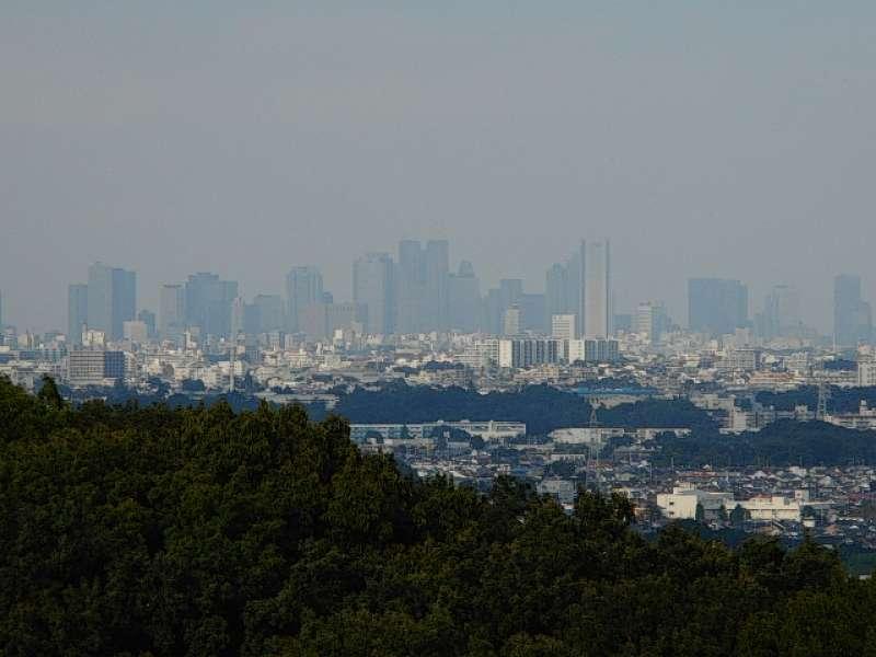 View of Shinjuku from Mt. Masugata