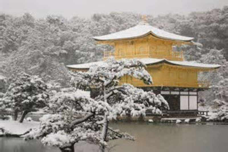 Golden Pavilion is beautiful in all season
