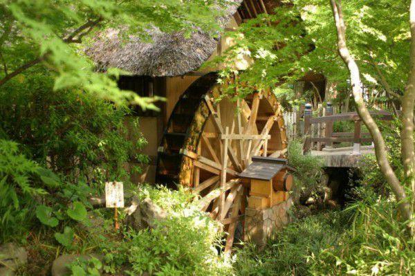 Old Water wheel in the Jindaiji area