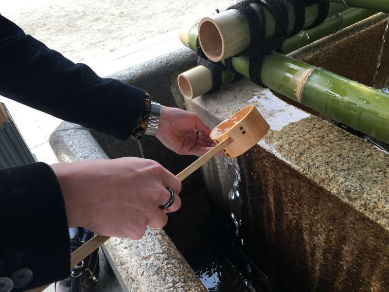 Learn about Japanese religious culture at a shrine.