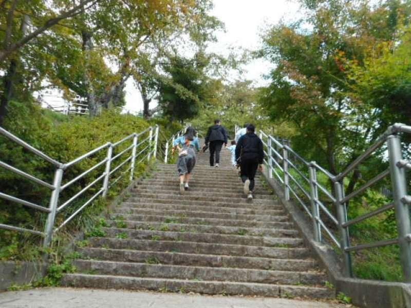 398 stairs to Arakurayama Sengen Park View Point