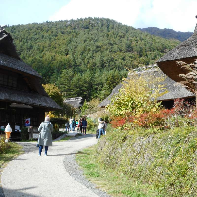 Saiko Iyashi no Sato NEMBA (Healing Village): 40 minute bus ride from Kawaguchiko Station
