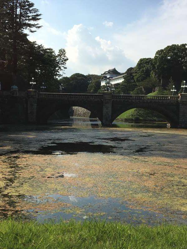 Nijubashi bridge in Imperial Palace ground