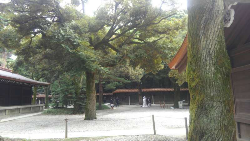Sometimes you can see a bride and a bridegroom in traditional Japanese style in the shrine.