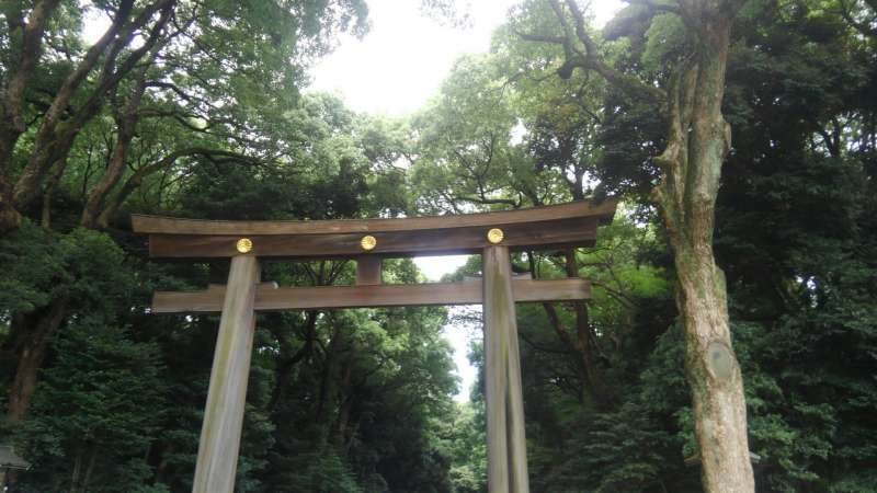 Torii is the border between this world and another world.