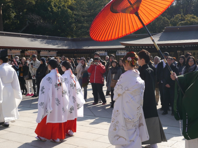 If you are lucky, you will be able to witness a newly wedded couple in traditional costumes walking in front of Meiji Shrine Main Hall.